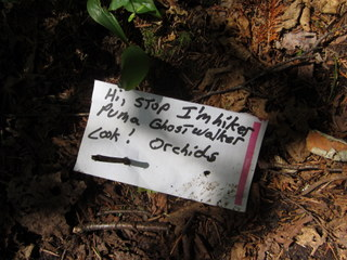 Puma Ghostwalker left this helpful note in case you missed the orchids